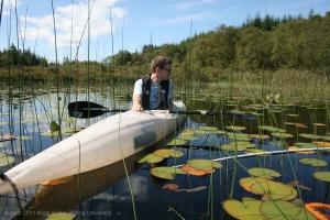 Quantifying beaver grazing on the aquatic plants