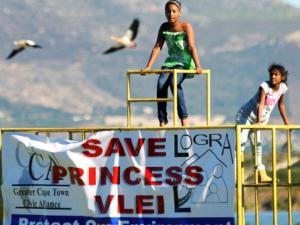 Efforts to save Princess Vlei (Photo credit: Cape Argus)
