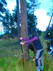 Putting up mist nets with all the midges is no easy task!