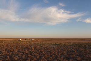 The Ustyurt Plateau, Uzbekistan: a globally-important example of the semi-arid biome. Image: A. Esipov