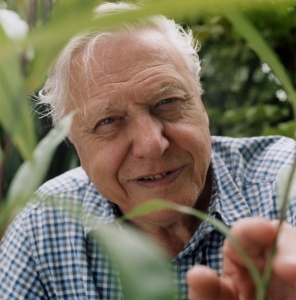 Sir David Attenborough (image: http://whitleyaward.org/)